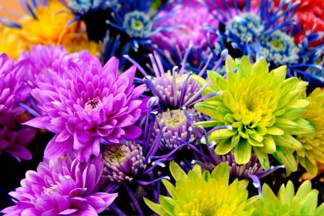 Absorbable flower dye used on different kind of flowers and plants